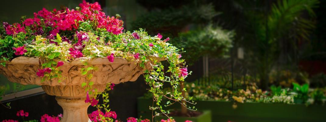 Benvenuti nel mondo della progettazione giardini!