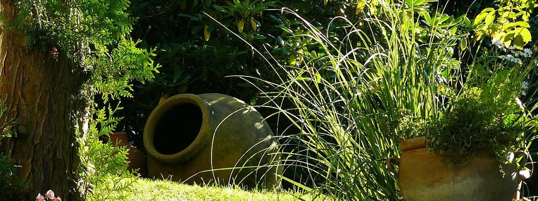 Realizzazione giardini, tra passione e professionalità