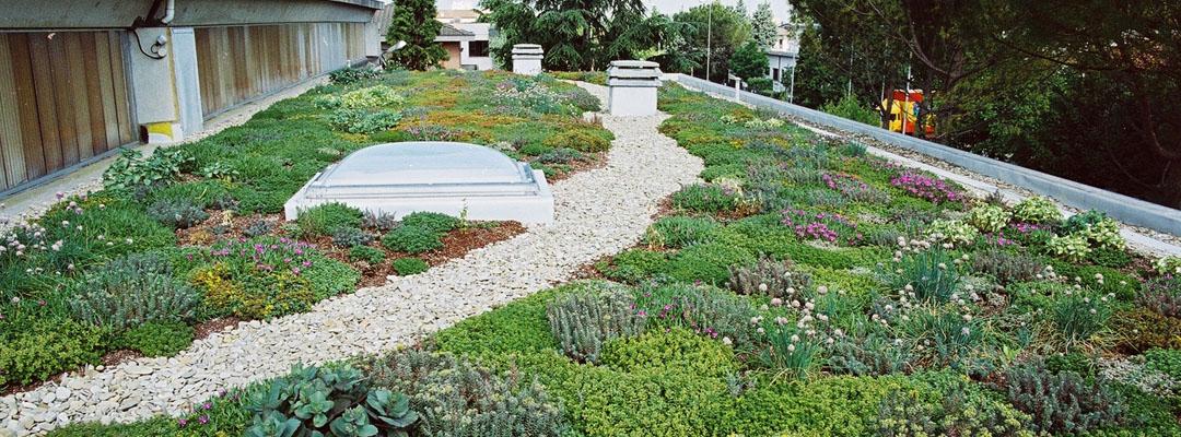 la realizzazione giardini pensili una scelta di design