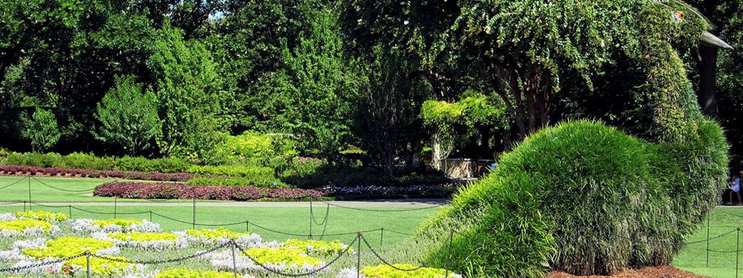 topiary-art