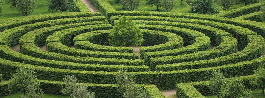 Il giardino labirinto: come ridare splendore agli spazi verdi antichi