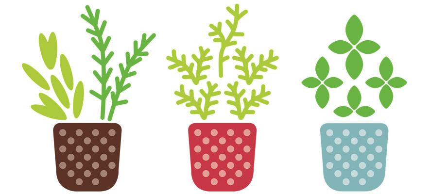 Organic garden products by Atelierdimensioneverde.com