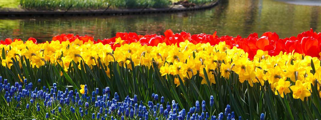 Giardini sensoriali sul blog di Atelierdimensioneverde.it